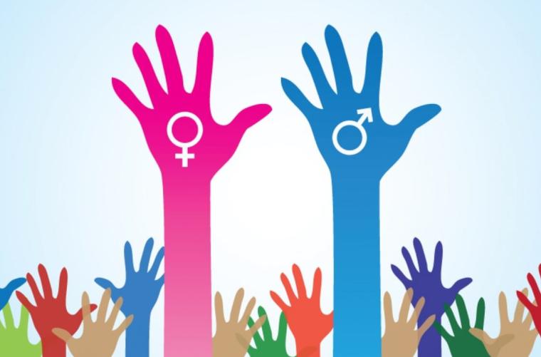 Escuela - Introducción al Género - Diciembre - 2018