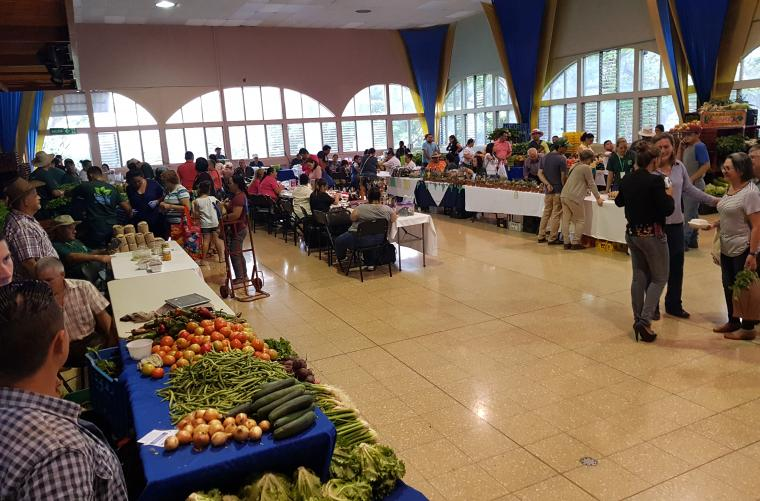 <em>Editar Noticia</em> Los miércoles en Escazú, tienen sabor a comunidad