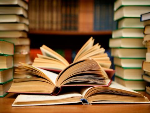 Primaria Educación Abierta - Prematrícula - Febrero - 2019